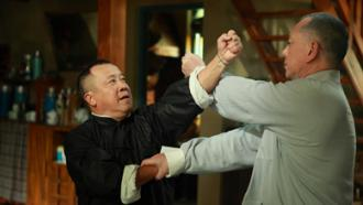 Ip Man: The Final Fight Clip 1