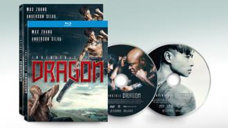 Official disc art for INVINCIBLE DRAGON from Well Go USA