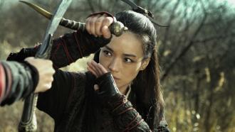 The Assassin (2015) - Official Movie Press Kit