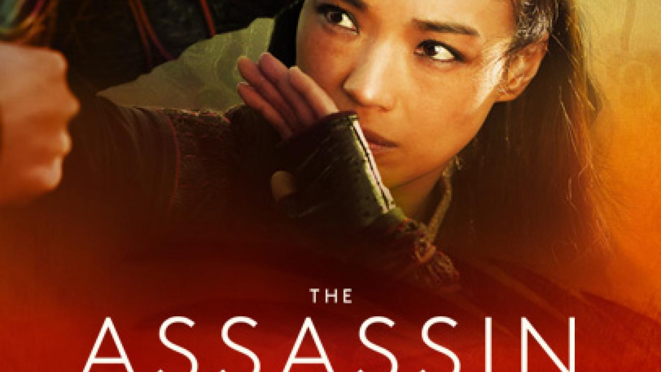 Official movie poster for The Assassin distributed by Well Go USA