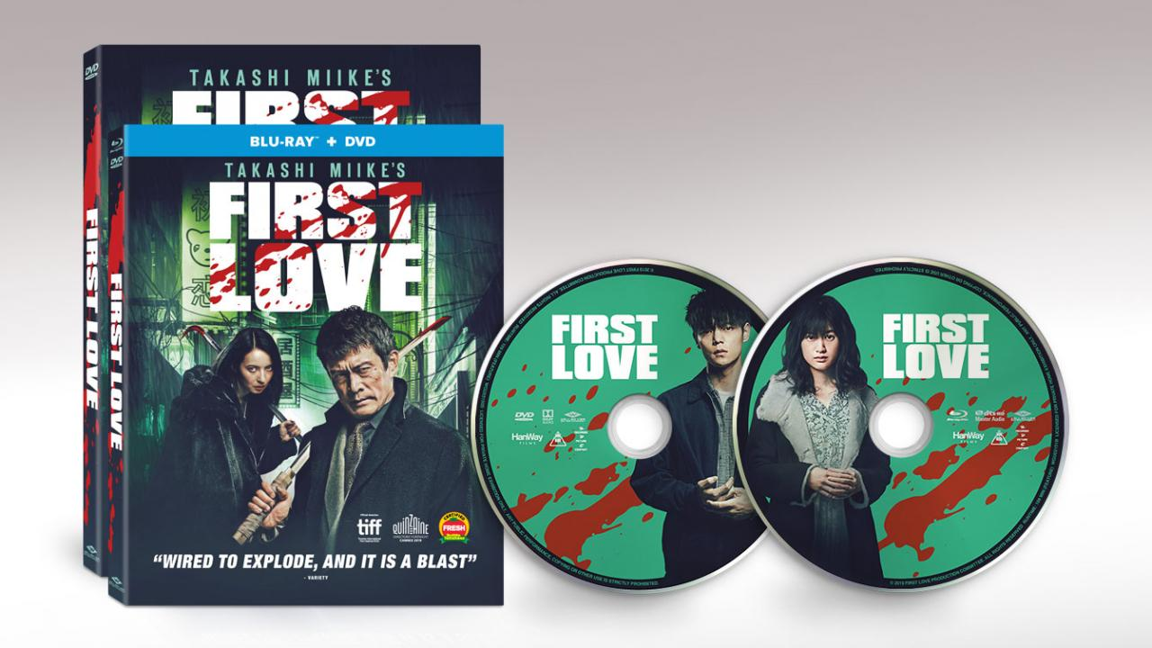 Image result for takashi miike first love dvd